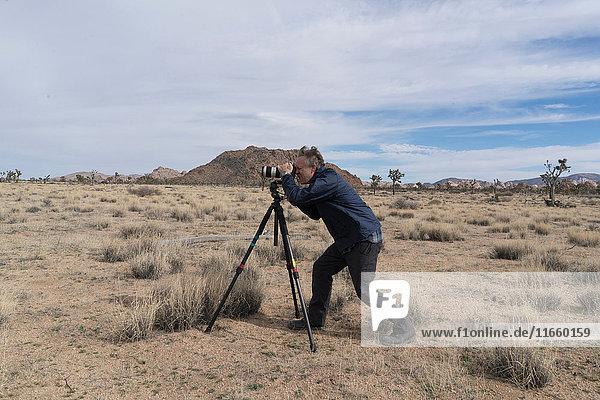 Photographer photographing desert  Joshua Tree National Park  Palm Springs  California  USA