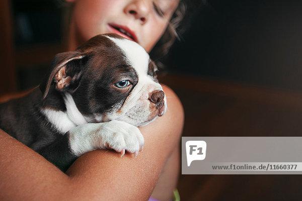 Mädchen umarmt Boston-Terrier-Welpen Mädchen umarmt Boston-Terrier-Welpen