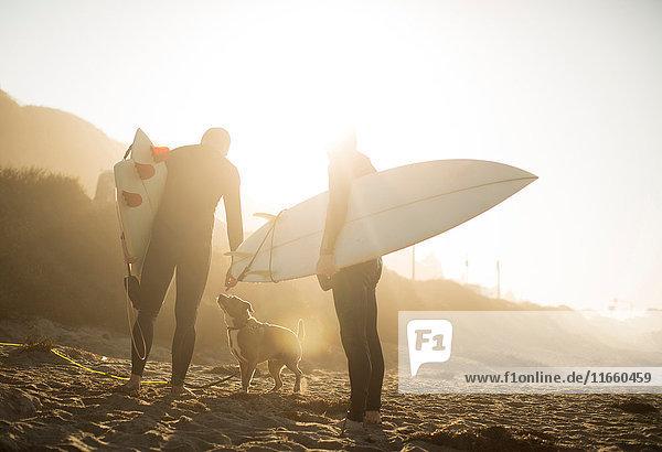 Surfer mit Hund im Sonnenlicht halten Surfbretter am Strand  Malibu  Kalifornien  USA