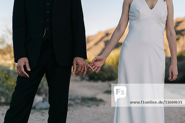 Bride and groom  in arid landscape  touching hands  mid section