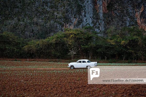 White vintage car on field dirt track  Vinales  Cuba