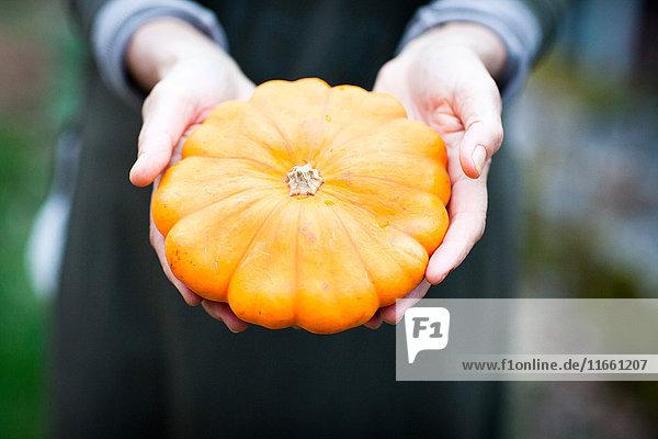 Gärtnerin hält Orangenkürbis-Gemüse in den Händen