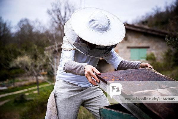 Bienenzüchterin entfernt Bienenstockdeckel im Garten