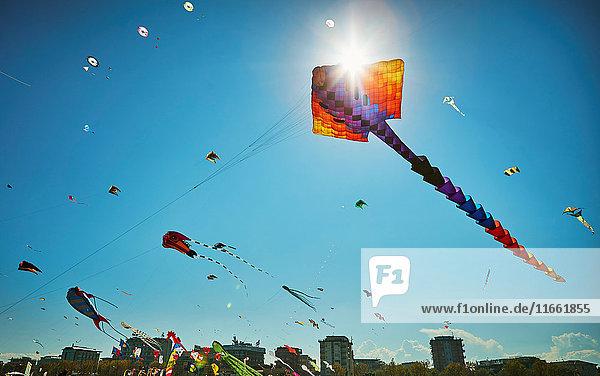 Bunte Drachen fliegen am blauen Himmel  Rimini  Italien