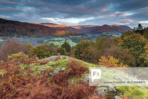 A view over Grasmere from White Moss Common  Lake District National Park  Cumbria  England  United Kingdom  Europe.