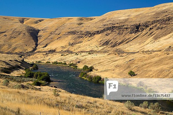 Deschutes River from Railbed Trail  Deschutes River State Park  Columbia River Gorge National Scenic Area  Oregon.