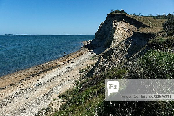Coastline landscape at north western Fur. Denmark. Fur is a small island located in Limfjorden  the fjord between Jutland and Vendsysse and in particular known for it's moler (Diatomaceous earth) deposits and fossils.