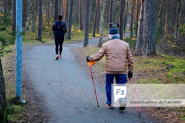 Two men  older and younger  exercising in a forrest in Ystad  Scania  Sweden.