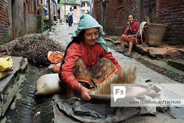 Winnowing grain in the streets of Bungamati  Kathmandu Valley  Nepal.