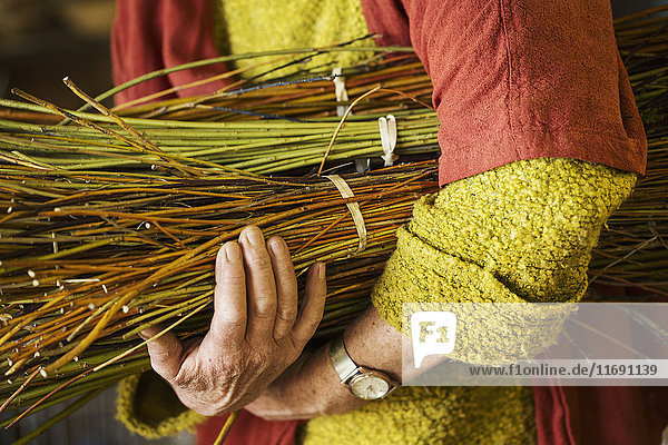 Nahaufnahme einer Frau  die in der Werkstatt einer Korbflechterin ein Weidenbündel hält. Nahaufnahme einer Frau, die in der Werkstatt einer Korbflechterin ein Weidenbündel hält.