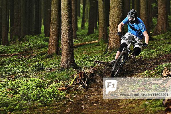 Männlicher Mountainbiker fährt durch Wälder