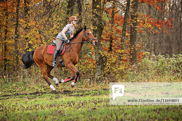 Woman riding horse in forest