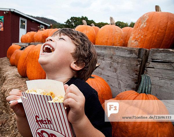 Junge isst Popcorn im Kürbisbeet