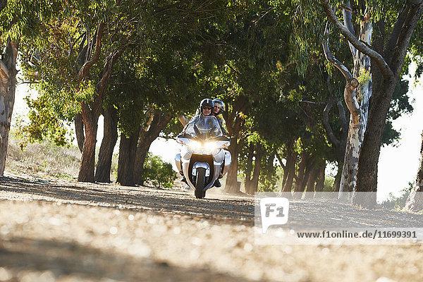 Paar fahrende Motorräder auf baumgesäumter Straße