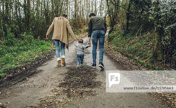 Rückansicht der Familienwanderung im Wald im Herbst
