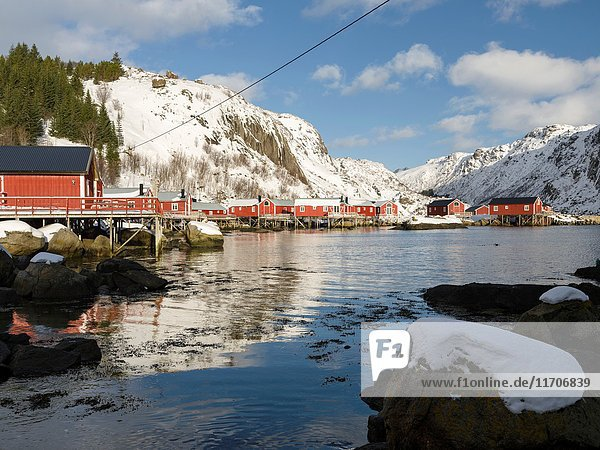 Rorbu  traditial fishing huts  now used as hotel  in the open air museum village Nussfjord on the island of Flakstadoya. The Lofoten Islands in northern Norway during winter. Europe  Scandinavia  Norway February.
