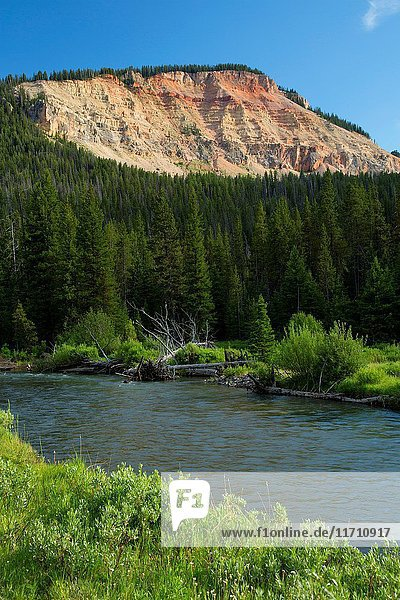 Mountain cliff with Soda Butte Creek  Yellowstone National Park  Wyoming.