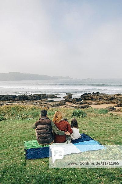 Rückansicht der Familie mit Hund auf Decke an der Küste