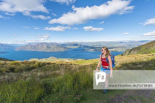 Wanderin auf Wanderweg zum Roys Peak  Lake Wanaka  Südalpen  Otago  Südinsel  Neuseeland  Ozeanien