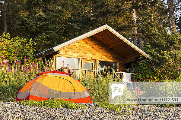A tent sits out front of a public use forest service cabin  Hesketh Island  Southcentral Alaska  USA