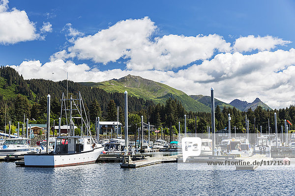 'Small Boats docked in the Seldovia Harbor on a bright Sunny day  Seldovia  Southcentral Alaska  USA  Summer'