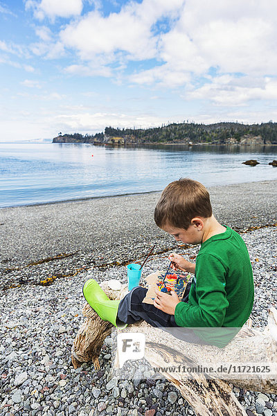 Young boy playing on the shore of Hesketh Island  Southcentral Alaska  USA