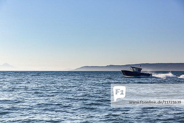 Small fishing boat in Kachemak Bay  Homer  Southcentral Alaska  USA