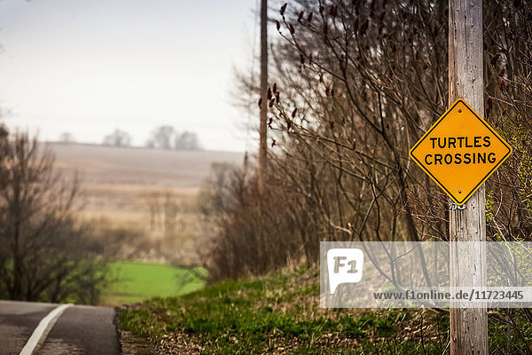 'A caution sign on the side of the road saying turtles crossing; Herschel  Saskatchewan  Canada'