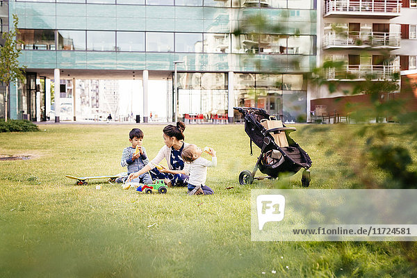 Mother with sons (2-3  4-5) sitting on grass