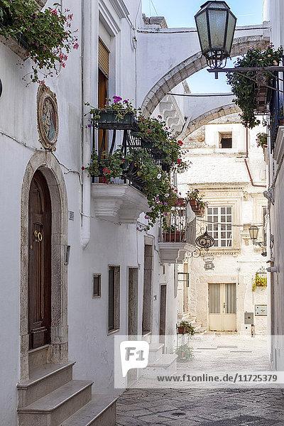 Italia  Italy  Apulia  Puglia  Bari district. Locorotondo.