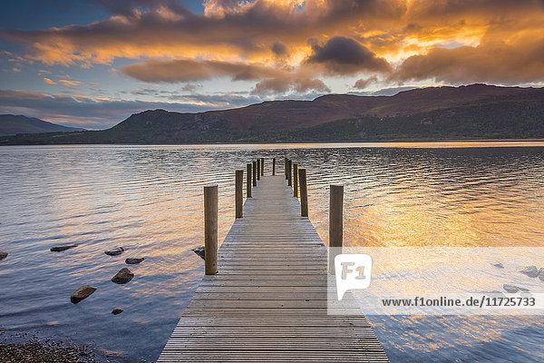 UK  England  Cumbria  Lake District  Derwentwater  High Brandelhow Landing
