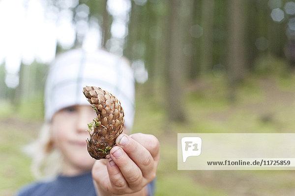 Boy holding cone
