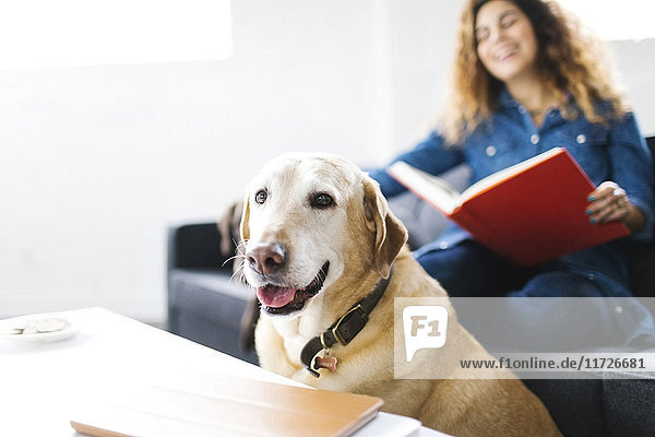 Woman sitting with dog in living room and reading book