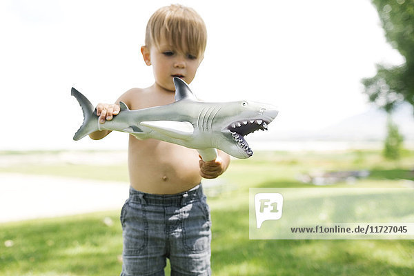 Boy (2-3) playing with toy shark