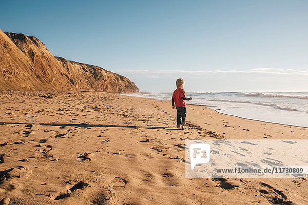 Young boy standing on beach  looking at sea  rear view  Buellton  California  USA