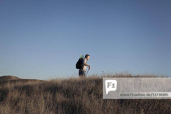 Fernsicht auf einen reifen Mann  der in Hügeln und langem Gras wandert