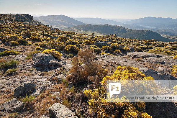 Sierra de Gredos from El Lanchal in Navalmoral de la Sierra. Avila. Castilla Leon. Spain. Europe.