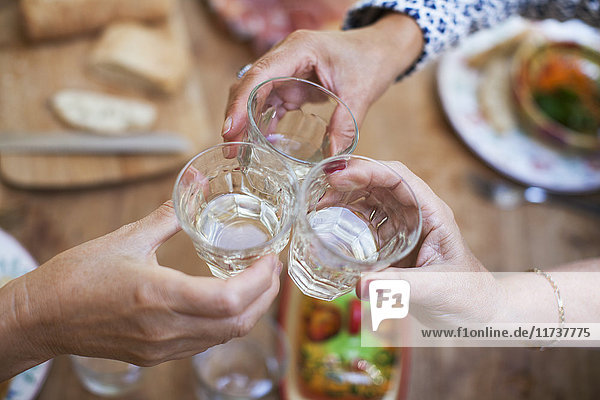 Three women having lunch together at home  making a toast  close-up of glasses