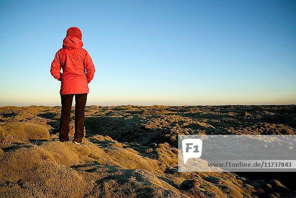 Iceland  Sudurland region  lava field  Model Released