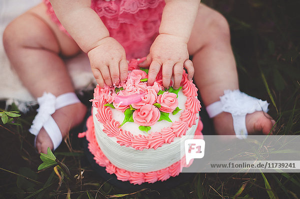 Cropped shot of baby girl sitting on grass touching pink roses on birthday cake