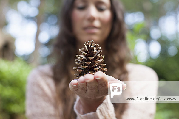 Shallow focus of woman holding pine cone on hand