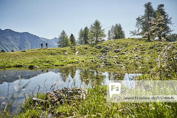 Junges Wanderpaar in ferner Landschaft  Karthaus  Schnalstal  Südtirol  Italien