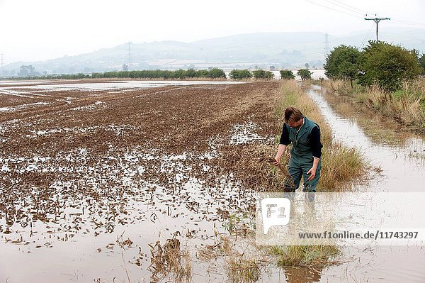 Farmer inspecting crop damage onflooded farmland near Wooler when the River Till broke its banks in september 2008 flooding over 16 square miles. (Photo by: Wayne Hutchinson/Farm Images/UIG)