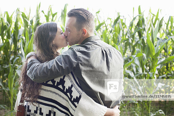 Rear view of couple kissing in corn plant field