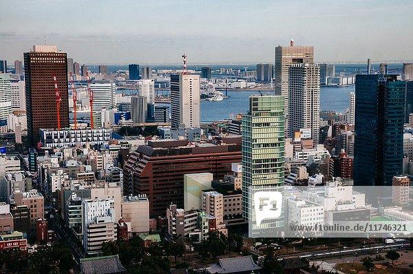 Tokyo skyline  Tokyo  Japan.