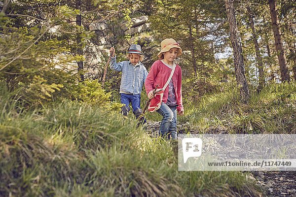 Two young children  exploring forest