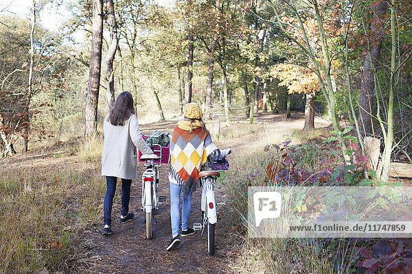 Full length rear view of teenage girls walking in forest pushing bicycles
