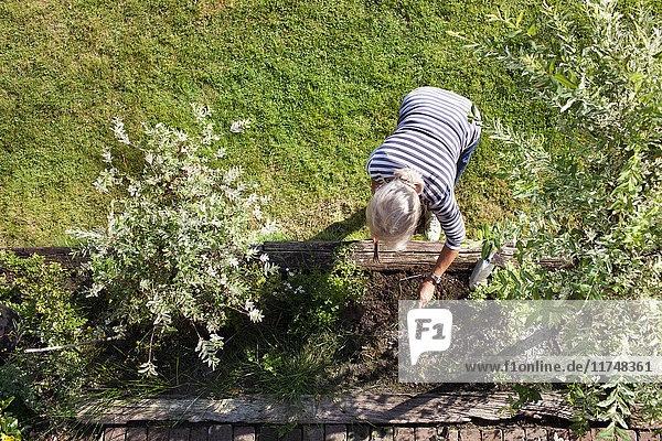 Senior woman  gardening  overhead view