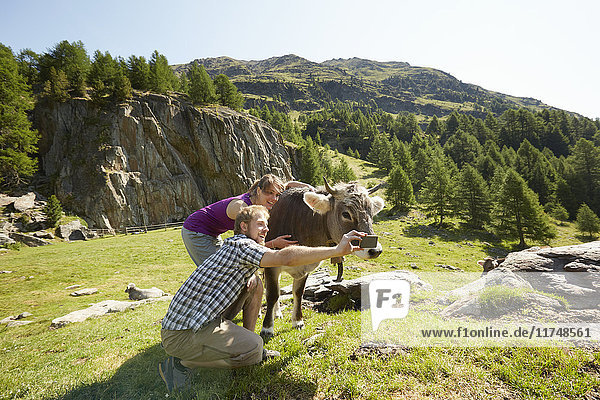 Junges Paar beim Smartphone-Selfie mit Kuh  Schnalstal  Südtirol  Italien