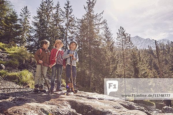 Drei Kinder stehen auf einem Felsen im Wald